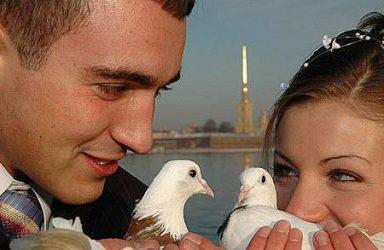 doves-bellevue-weddings-birds